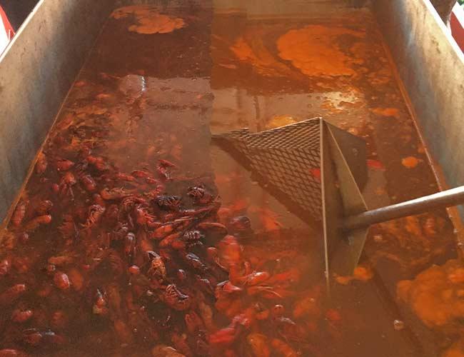Cajun Catering | CAJUN CRAWFISH COMPANY | Dallas' #1 Cajun Catering Company Since 1998
