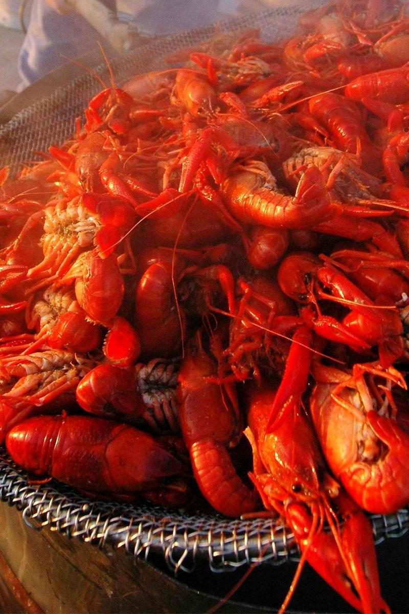 Cajun Recipe for Boiled Live Crawfish/Crayfish